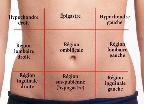 gastro-enterologie pathologie Ulcère de estomac ou du duodénum